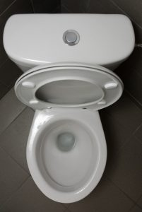 aerial-view-of-a-toilet